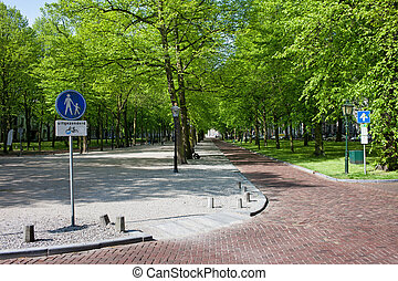 Lange Voorhout in Den Haag - Park avenue and street of the...