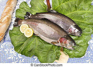 two freshly caught trouts on a rhubarb leaf served on a...
