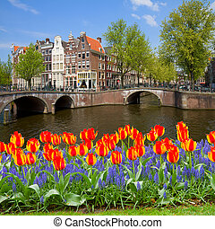 bridges of canal ring, old town of  Amsterdam