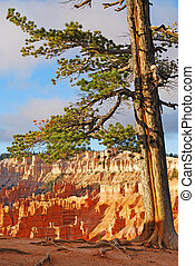 Bryce Canyon at Sunrise Overlook