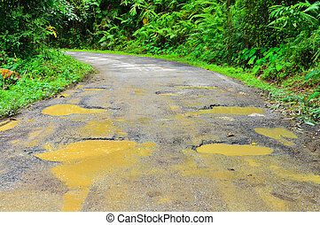 Damaged country road with trees - Damaged asphalt pavement...