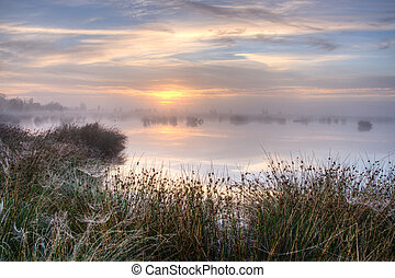 Great misty sunset over swamp