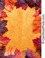 Autumn leaves - Frame made with autumn leaves
