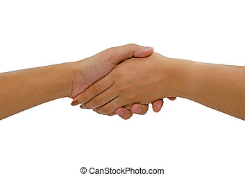 Woman and man handshaking Isolated on white background
