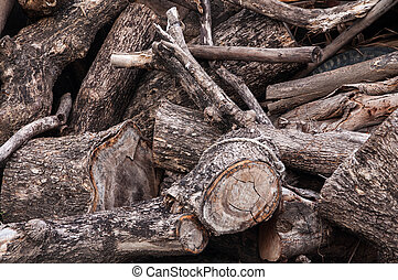 tree stumps and felled forest deforestation.