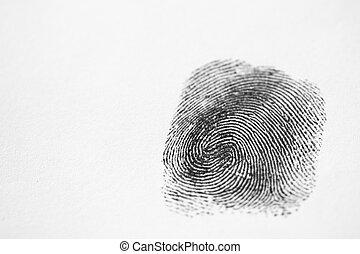 Black Fingerprint - A single black fingerprint on a white...