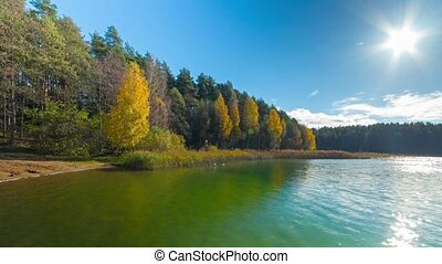 Autumn forest and lake, timelapse
