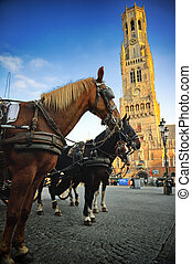 Horse-drawn carriages at Grote Markt in Bruges, Belgium