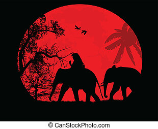 Elephants in Thailand over sunset - Elephants in thailand...