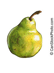 Pear isolated on white. Watercolor illustration