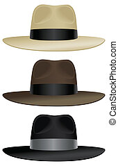 Wide brim fedora - A wide brimmed fedora in classic colors