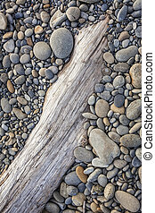 Rocky Beach and Driftwood - Smooth stones on driftwood at...