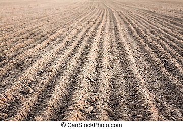 Furrows in a field after plowing it. - Background of newly...