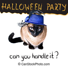 Halloween party banner funny edgy jumpy Siamese Hilarious...