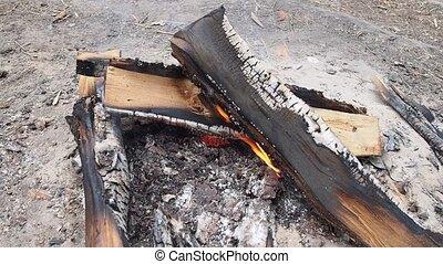 bonfire - firewood slowly burned in bonfire