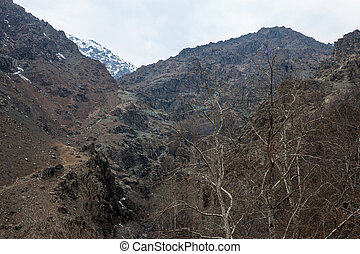 Alborz mountains, Iran