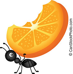 Ant Carrying Orange Slices - Scalable vectorial image...