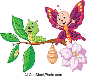 Cartoon Butterfly metamorphosis - Vector illustration of...