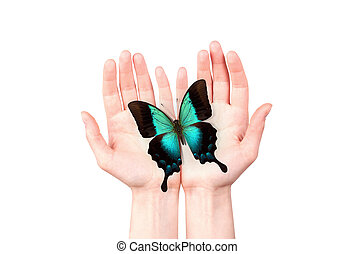butterfly on mans hand freedom and hope concept
