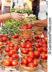 Farmers Market - Female hands handling bushel basket filled...