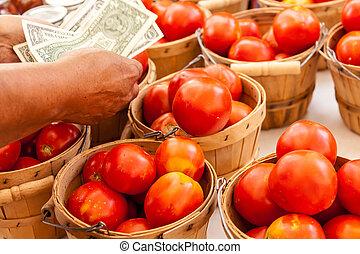 Farmers Market - Female hands counting money over bushel...