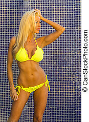 Blonde Bikini Model - A bikini model posing in an outdoor...