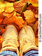 Autumn Background with Fall leaves and woman Shoes Boots...