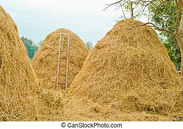 haystack in Thailand