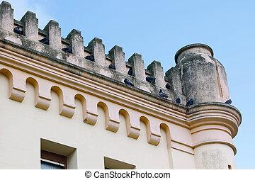 repisa, edificio, palomas