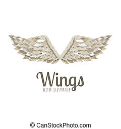 wings design over white background vector illustration