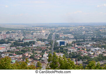 Roofs of city Lviv with trees