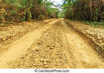 Rough Dirt Tracks