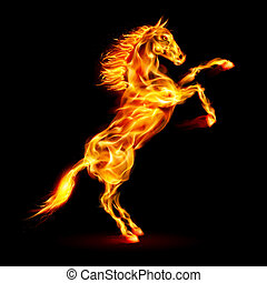 Fire horse rearing up Illustration on black background