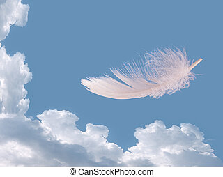 Floating feather over sky - lightness, freedom concept - As...