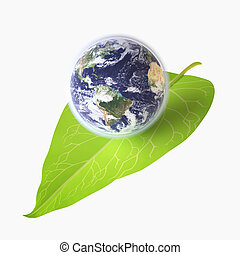 Earth on Green Leaf - Three-dimensional Globe on Green Leaf...