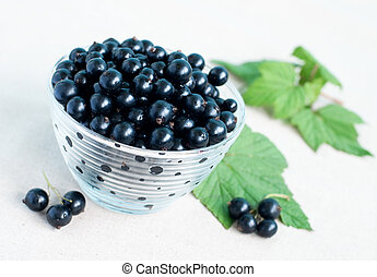 blackcurrants - Bowl of blackcurrants and green leaves on...