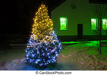 Christmas tree night with lights and rural house