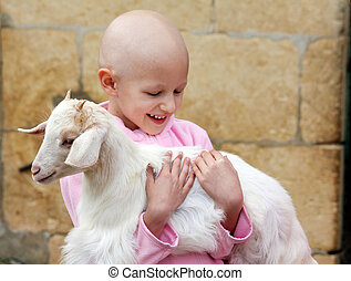 cancer child holding a goat - a caucasian child holding a...