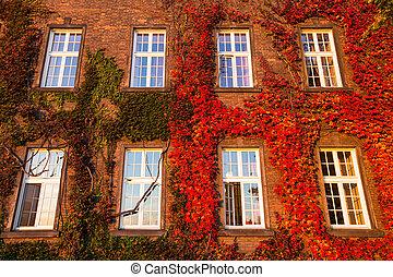 Windows of Wawel Castle (autumn) in Krakow, Poland.