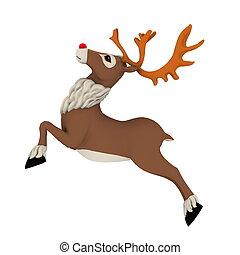 reindeer - image of reindeer