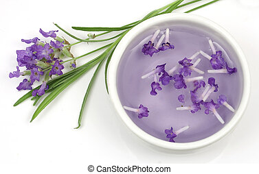 Lavender flower and extract - Lavender plant and extract...