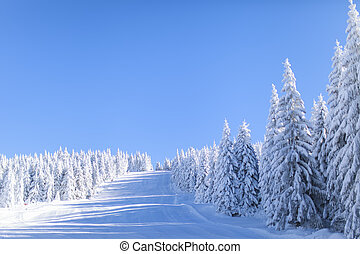 Mountain at winter - Scenic view on the mountain in winter