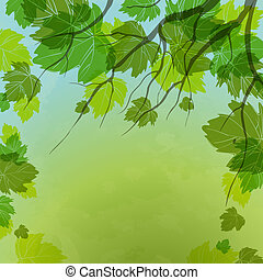 Fresh Green Leaves On Natural Background.