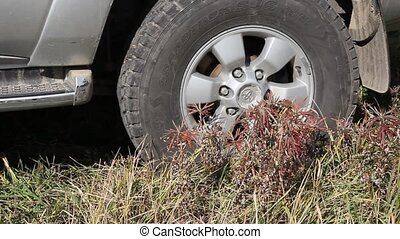 off road behind an unrecognizable car in grass and mud