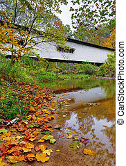 Portland Mills Covered Bridge in Autumn - Indiana's Portland...