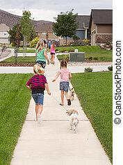 children wlalking dogs
