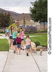 children walking dogs