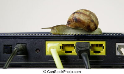 Slow internet connection - Snail crawling on home router