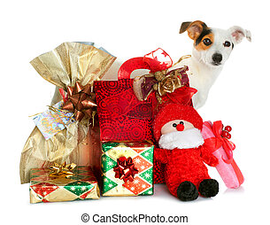 Gift boxes with cute little dog - Holiday gift boxes...