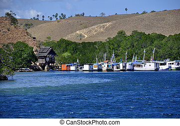 Boats at Komodo National Park - Rinca island, Komodo...